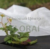 Агроволокно бел. 50г/кв м шир 3,20